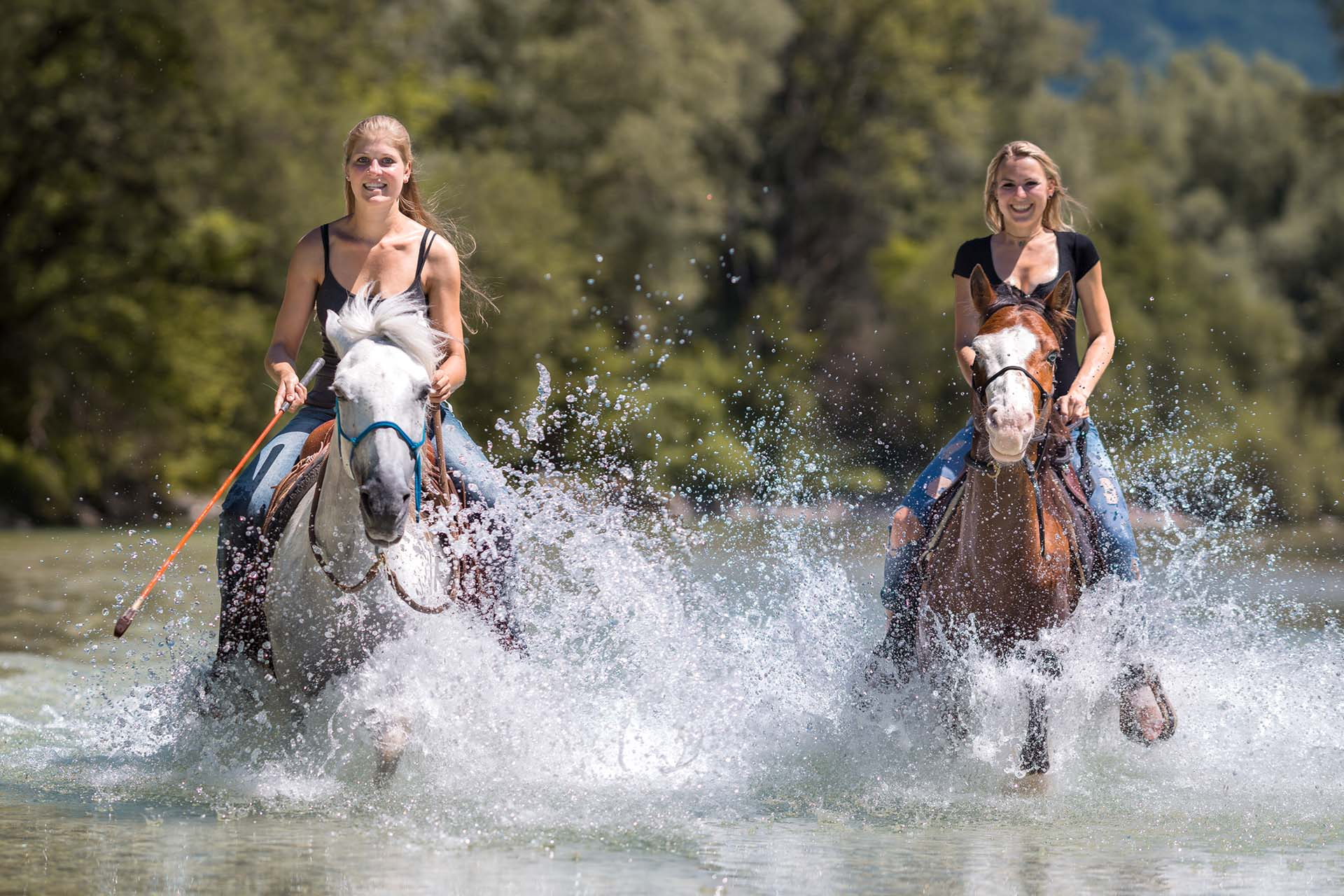 Hund&Pferd_Equine2