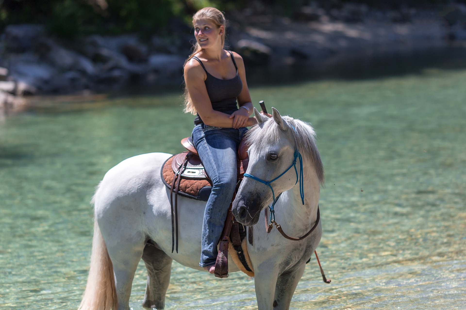 Hund&Pferd_Equine4